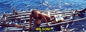 Image result for wilson hanks castaway gif