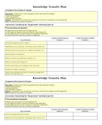 Role Transition Plan Template