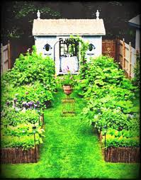 large size of small vegetable garden ideas how to start design low maintenance gardens on budget