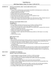 It Consultant Resume Sample 10 It Consultant Resume Example Resume Samples