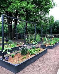 garden planter box raised bed garden