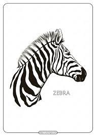 Quagga) and mountain zebra (e. Free Printable Zebra Mandala Coloring Pages