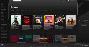 Do Viral Spotify Music Promotion For Your Track And Album