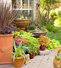 container gardens. Brumgardt-Girolami Garden Container Gardens