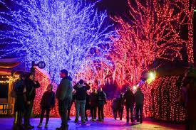 Zoo Lights Promo Code Portland Oregon 10 Twinkling Light Displays For The Holidays Around Portland