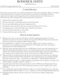 Project Manager Resume Sample It Software Development Project ...