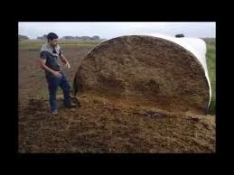 Argentinian Cattle Farmer Explains Feeding Process From A Silage Bag