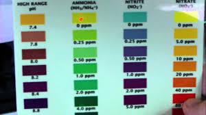 Api Water Test Color Chart Www Bedowntowndaytona Com