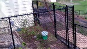 painting chain link fence image