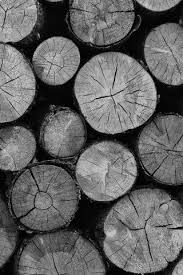 iphone backgrounds. Perfect Backgrounds Stacked Cut Wood Logs Black And White IPhone 5 Wallpaper Throughout Iphone Backgrounds A