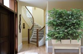 ... Wonderful Indoor Herb Garden Planters Pictures Inspirations Home Decor  Plants For Sale 94 ...