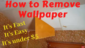 Removing Wallpaper With Water and ...