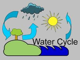 interesting facts about the water cycle com interesting facts about the water cycle