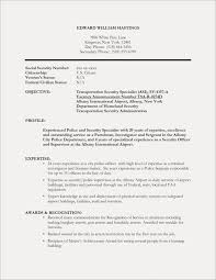 Security Forces Resume Cool Resume Security Resume Example Security Engineer Resume Example