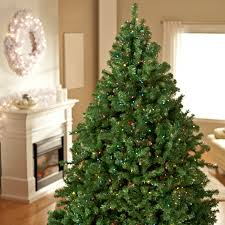 Decorating Beautiful Ornaments And Home Decor Balsam Hill Blue Spruce Pre Lit Christmas Tree