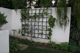 Small Picture Garden Metalwork Long lasting Trellis