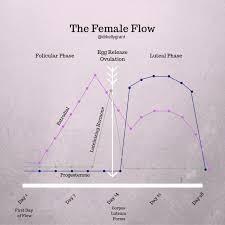 Acupuncture Points For Fertility Chart Fertility Hormone Acupuncture Kg