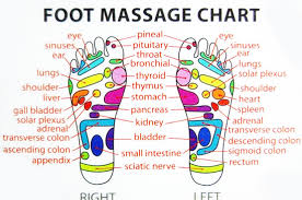Foot Chart Origin Reflexology Therapy For The Soul Paolo Da Floresta