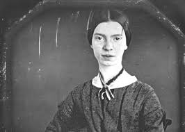 essay on emily dickinson poetry we can do your homework for you biography com