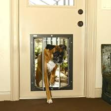 exterior dog door large dog door for sliding glass