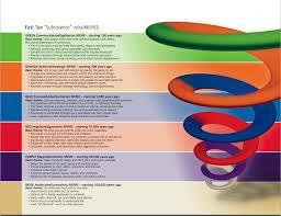 Spiral Dynamics Visuals The Liturgists
