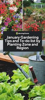 january gardening tips and to do list
