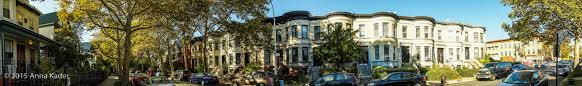 in the 1920 s and 30 s larger apartment buildings were built in prospect lefferts gardens brooklyn new york