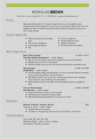 Free Collection 51 Web Developer Resume Template Professional