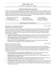 Resume Examples For Professionals Unique Mid Career Professional Page48 48b48aee48 Resume Examples 48