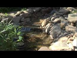 smartpond s how to build a pond or water feature