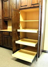 under cabinet pull out shelf medium size of shelves for kitchen cabinets pull out storage units