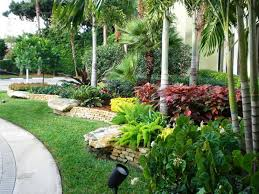 Small Picture Wow what a lush landscape I love it Florida landscaping Tampa