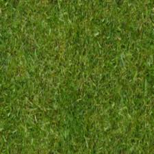 grass texture game. Grass Long. Seamless Game Texture. 256 X Png Texture