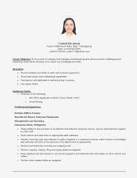 Objective Sample For Resumes Career Objective Example For Ojt Resume Sample Business