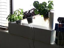 window sill herb garden kits window sill herb garden kit hydroponic window herb garden windowsill herb