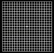 Amsler Chart Untitled Document