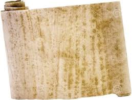 Image result for hiyeroglif kuran parÅömen