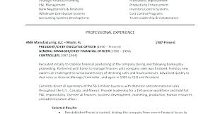Examples Of Summaries For Resumes Executive Summary Resume Examples Simple Resume Format