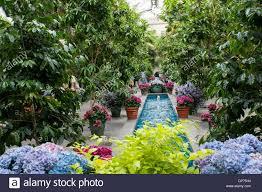 large size of botanical gardens hours inside the united states botanic garden in washington usa stock