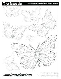 Printable Butterfly Outline Printable Pictures Of Butterflies Catholicsagainsttorture Org