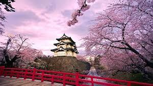 Spring in Japan Wallpapers - Top Free ...