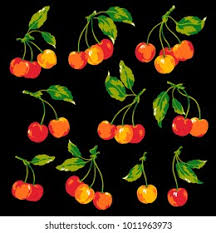 Illustration Cherry i Drew Cherry Stock Vector (Royalty Free ...