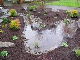 Small Picture Rain Gardens