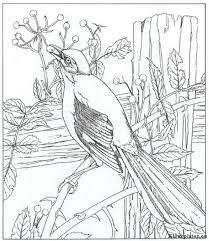 Natuur Kleurplaat 1442 Kleurplaat
