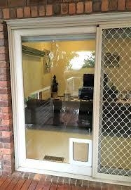 patio doggie door insert full size of screen door with pet door sliding glass door dog