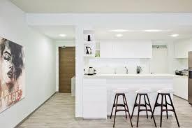 ikea or custom made kitchen cabinets