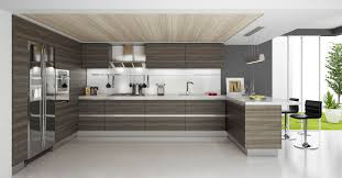 Continental Kitchen Cabinets Aspen Oak Rta Modern Kitchen Cabinets