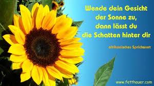 Schöne Sprüche Sonnenblume Deutsch Sprechen