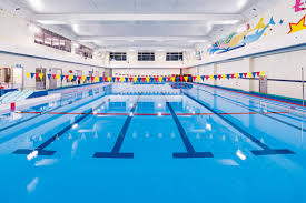 indoor pool lighting. The 6-lane, 25m Heated Swimming Pool Is Brightly And Safely Lit With LEDioc CEILING HB LED Indoor Lighting Fixtures. B