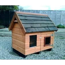 outdoor cat kennel outdoor cat kennel housing how to build an run house ideas outdoor cat outdoor cat